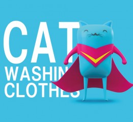 CAT WASHING CLOTHES小猫搓衣