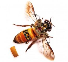 机械蜜蜂一枚