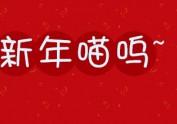 新年喵呜~~