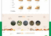 WEB Design网页设计;营销型网站(干