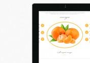 fruit官网首页设计
