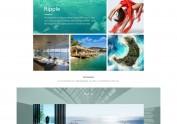W摄影公司企业官网