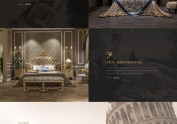 贵族party官网设计