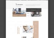 官网设计homepage