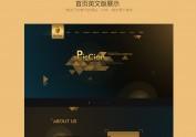 网页网站设计 首页设计 扁平几何设计