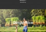 Qingxi Rice web design 2016