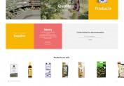公司网站海外版设计