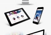 新秀滑雪学校——企业VI及网站设计