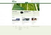 网站WEB设计
