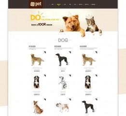 Pet官方网站设计