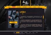 保镖公司-官方站