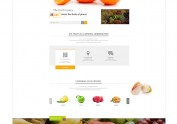 FRUIT & VEGETABLE (revise)