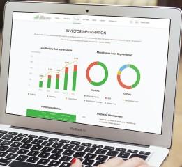 Microfinance Website(Loan Reporter