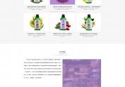 网页设计练习——紫色大屏大网站