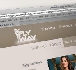 客户FLY WAY企业官网国际站简洁大气