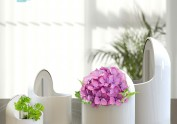 """3D打印的""""自动浇水花盆""""#吉林艺术"""
