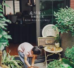 小米的夏天(四)——紫阳花庭院