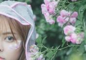 蔷薇花落下雨天