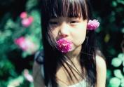 心有猛虎,细嗅蔷薇——树屋日记