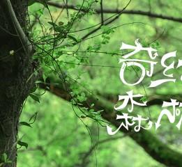 手绘字体练习(二)