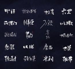 《字如奇人》-多种书法字体设计之人