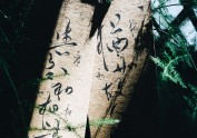 手写菊花体书签