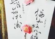手写菊花体--与君初相识。