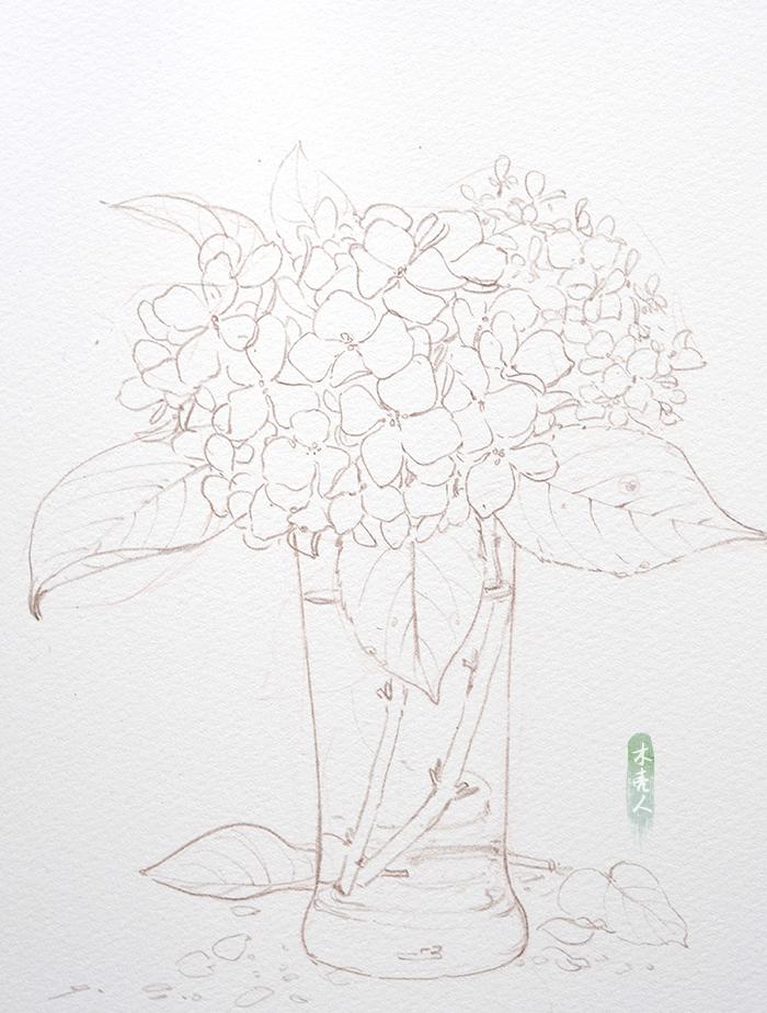 绣球步骤-商业插画-插画-设计作品-中国设计之窗