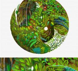 关于大自然微生植物的系列插画