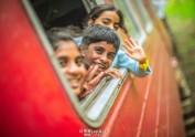 火车开往南方的锡兰(上)