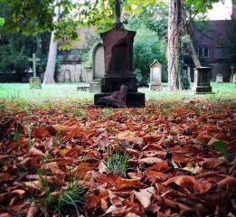 德国的秋天