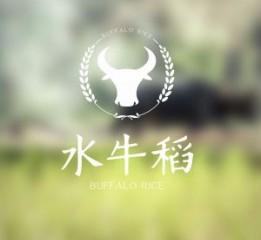 勤略案例   原阳大米水牛稻品牌设计