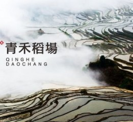 山信集团青禾稻场大米品牌设计