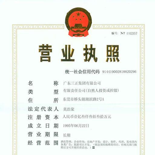 广东三正集团