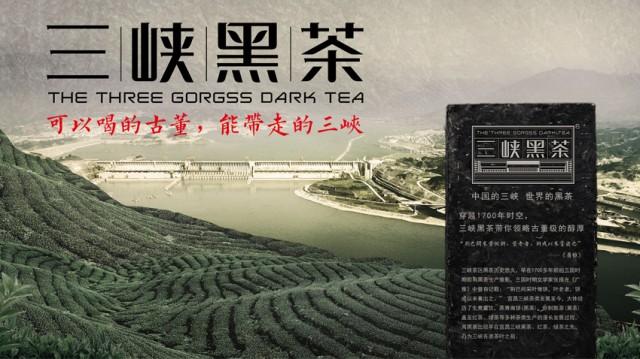 三峡黑茶广宣画面设计 · 黑马奔腾策划设计