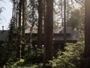 與自然融為一體的建筑設計:智利森林中的mallaruco房子