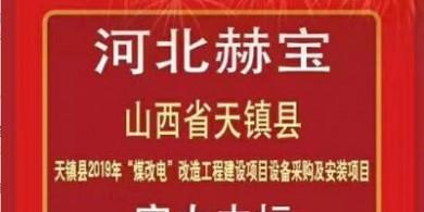 臨汾市碳纖維電暖器|濟寧市碳纖維墻暖畫廠家優選河北省赫寶新能