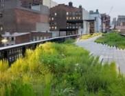 紐約惠特尼,一座通透的美術館