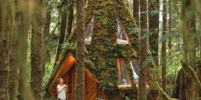 這所夢幻般的鉆石小屋,只存在童話故的相關圖片