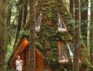 這所夢幻般的鉆石小屋,只存在童話故事里