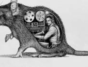 超现实主义的解剖人类和动物插图,神秘且震撼