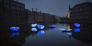 第八届阿姆斯特丹灯光节照亮夜晚的城市
