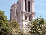 在封锁期间,从巴黎圣母院偷石头的小偷被捕