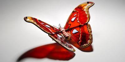 濒临灭绝的蝴蝶玻璃雕塑,美丽又脆弱的相关图片