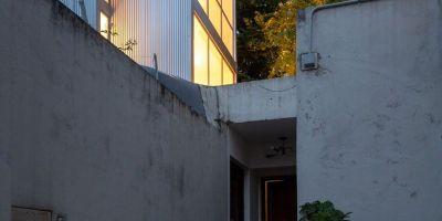 小小的城市綠洲,阿根廷垂直微型房子的相關圖片