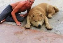 海滩惊现大型猛兽!走近才知道只是沙雕艺术品相关图片