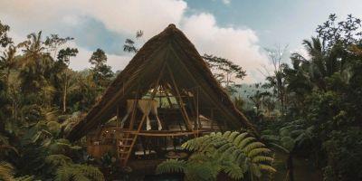 巴厘岛80平米的惊艳竹楼,让人心之所的相关图片