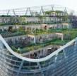 世界上最高的混合动力木材塔楼计划公布