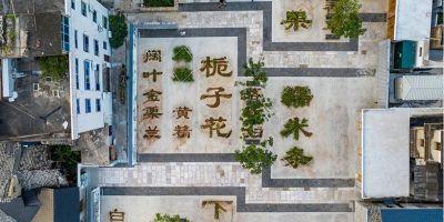 浙江中草藥花園,用植物的生長暈染出的相關圖片