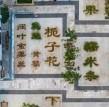 浙江中草药花园,用植物的生长晕染出光阴的色泽